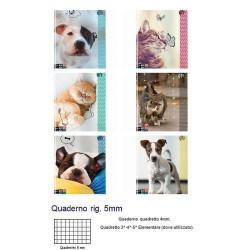 GROSSISTA QUADERNO A4 MAXI SEVEN 96/100 ANIMAL 5M 6 SOGGETTI