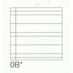 GROSSISTA QUADERNO MAXI PIGNA gr.80 B P.60.039